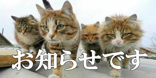スポーツカイロプラクティックセミナー @大阪の予定