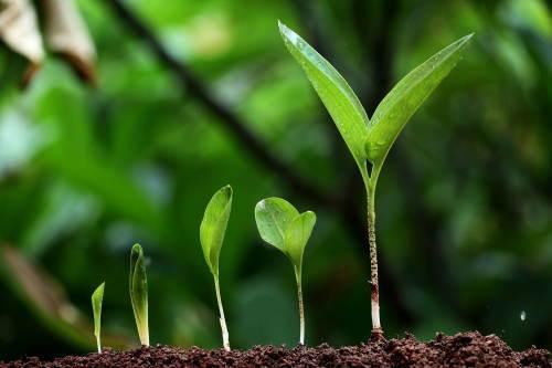 成長の余地は無限に残されている