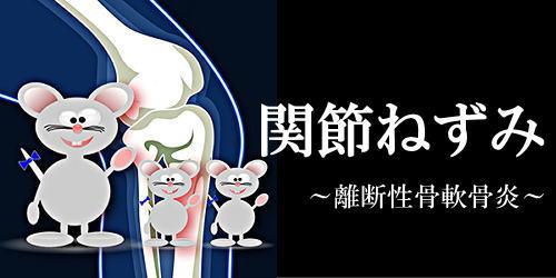 関節ねずみ(離断性骨軟骨炎)