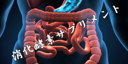 消化酵素サプリメント