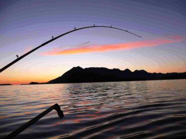 魚は与えるのではなく、釣り方を教えなければならない