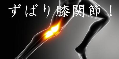 ずばり膝関節!